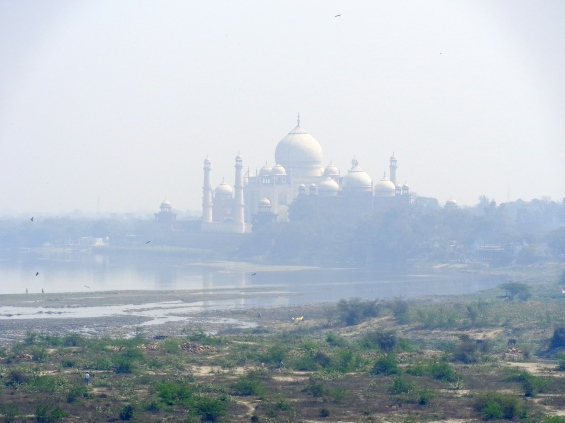The Taj Mahal, seen from afar